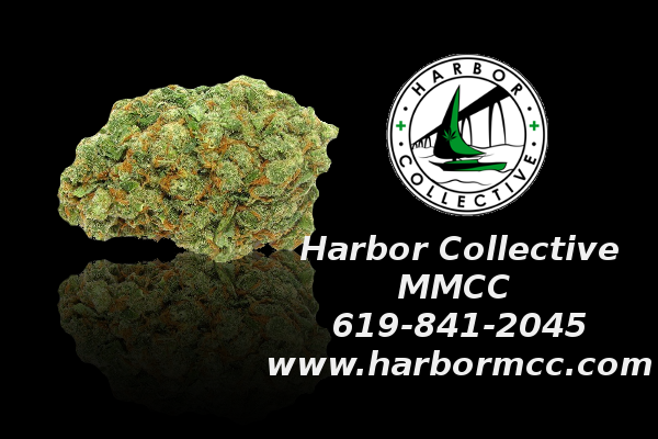 Harbor Collective MMCC Saturday Ad