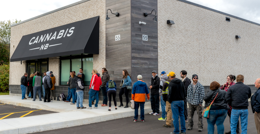 5 Cannabis Businesses
