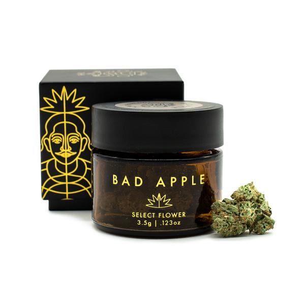 Bad Apple Citrus Kush Premium Flower