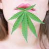 Edible Cannabis Experience